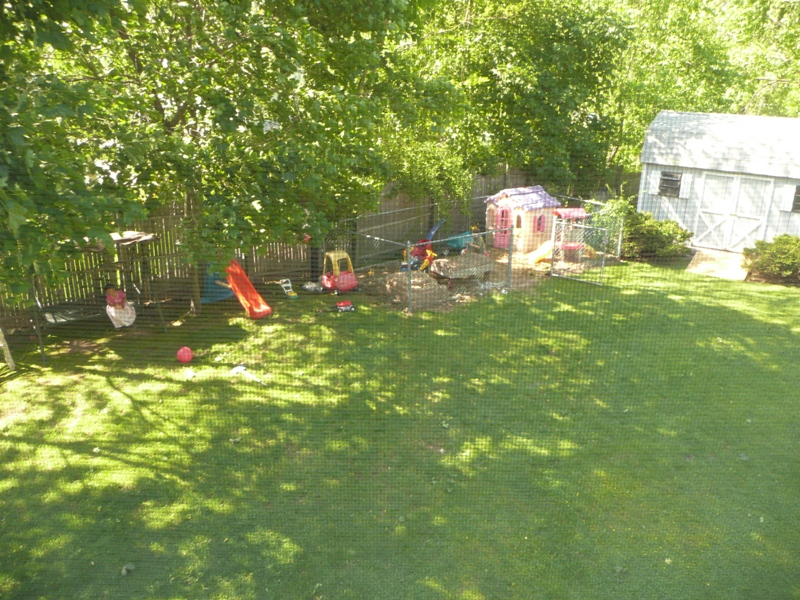 Yard from Upstairs