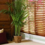 Getting a New Window Treatment for Your Home